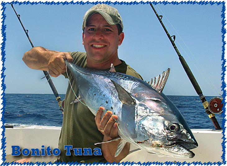 My personal site for Cancun fishing report
